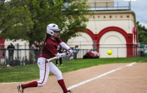 No sophomore slump for softball slugger