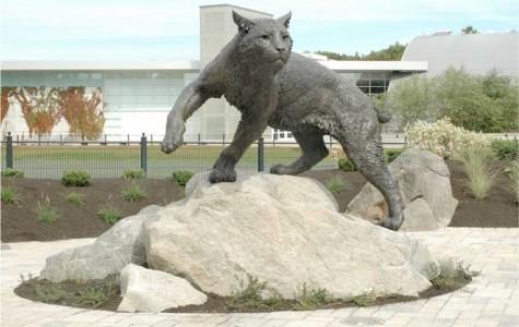 A.S. to build bronze wildcat statue