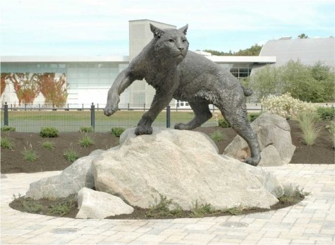A $160,000 wildcat statue from the University of New Hampshire that the Associated Students is using as an example to illustrate the one they want to build for Chico State. Photo courtesy of the Associated Students.
