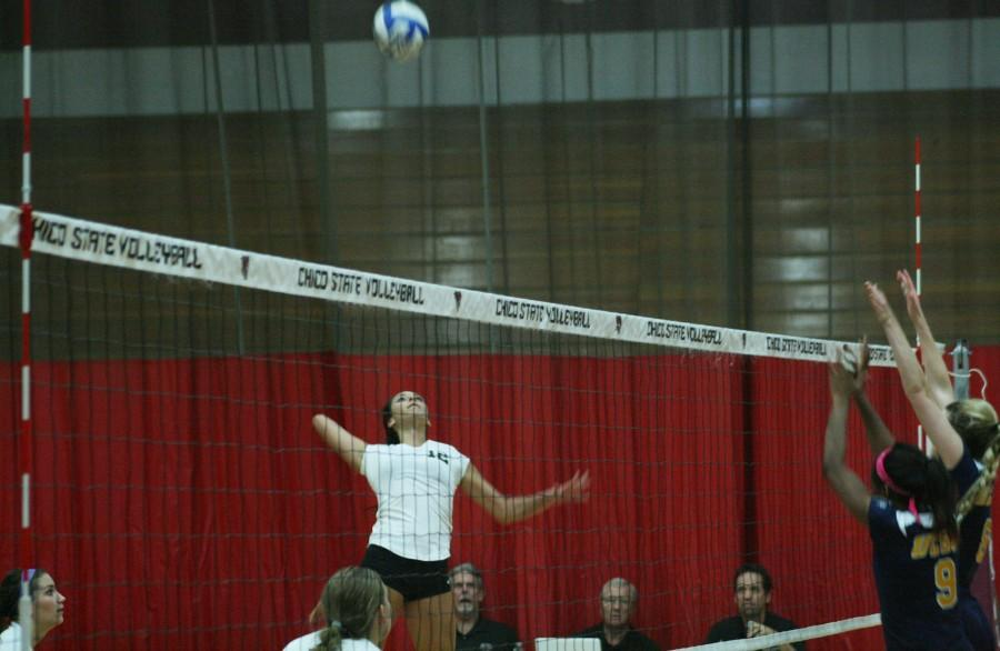 Wildcat Olivia Mediano goes for a spike over  UC San Diego Tritons at Acker Gym Friday October 17, 2014. Photo credit: John Domogma