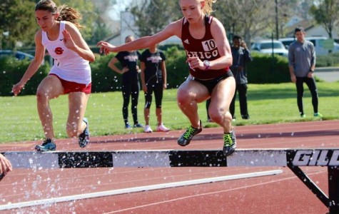 First-year runner sprints into action for Wildcats