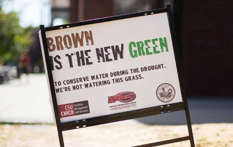 Chico State reduces water usage by 43 percent