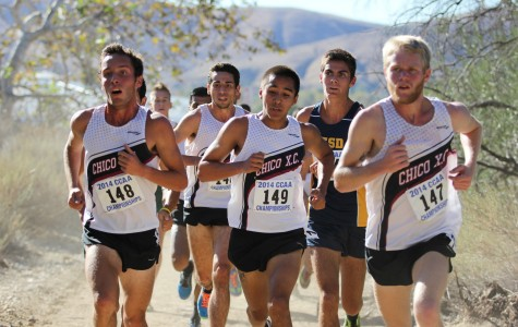 Men's cross-country shines in first meet of season