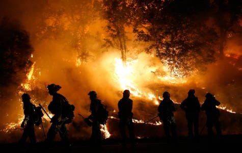 Fighting fire with well-organized relief efforts, not with fire