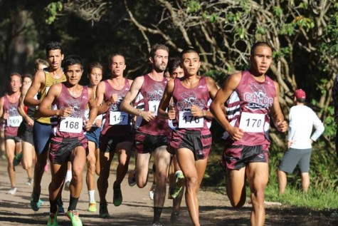 The Chico State men's and women's cross country teams will be headed to the NCAA Championships. Photo courtesy of Gary Towne.