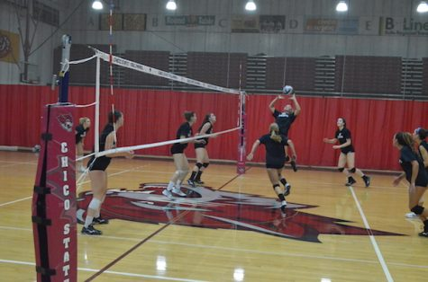The Chico State volleyball team sets the ball during practice. Photo credit: Jordan Jarrell