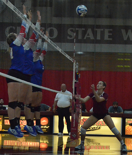 Outside hitter Kim Wright sets the ball during a Chico State home game. Photo credit: Jordan Jarrell