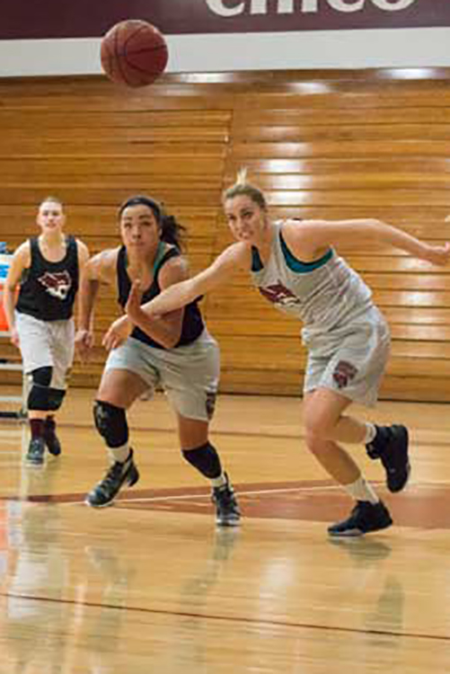 Whitney Branham battles for the ball during a Wildcat home game. Orion stock image.