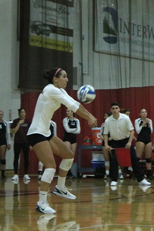 Junior defensive specialist Shannon Cotton sets the ball during a Wildcat home game. Photo credit: Jovanna Garcia