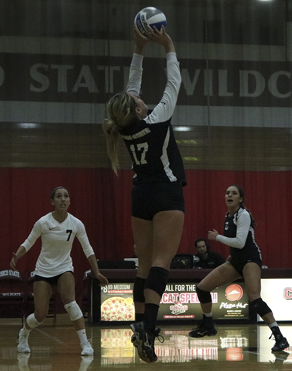 Senior setter Torey Thompson jumps to set the ball during a Wildcats home game. Photo credit: Jovanna Garcia