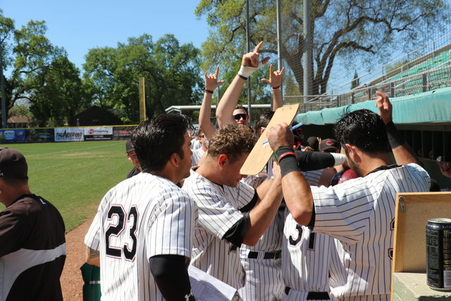 Chico State baseball is leader in the pack