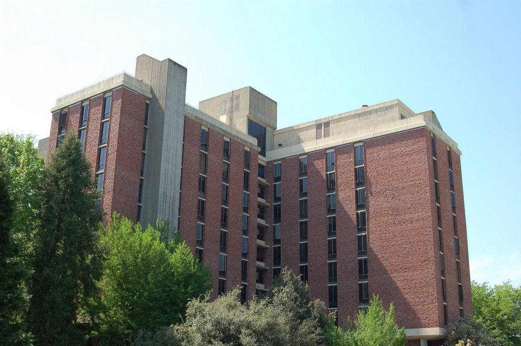 Whitney Hall hosts wild dorm intruder