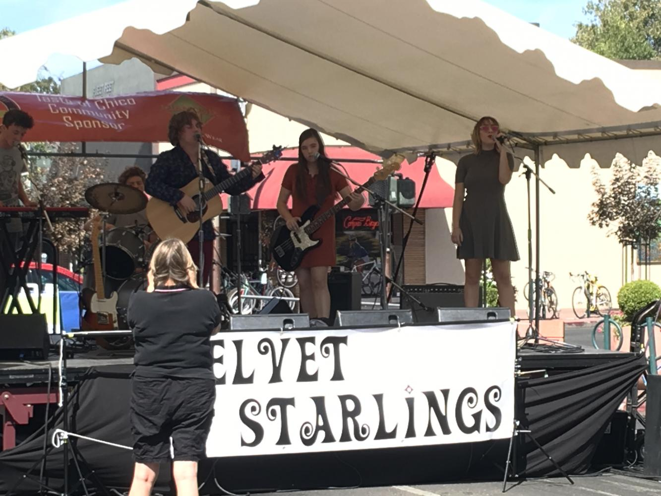 Local band, Velvet Starlings, at Taste of Chico downtown Photo credit: Natalie Hanson