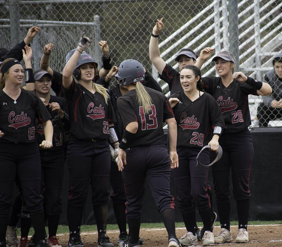 The Wildcats celebrate following Bailey Akins home run that broke the record for most as a team in a single season. Photo credit: Martin Chang