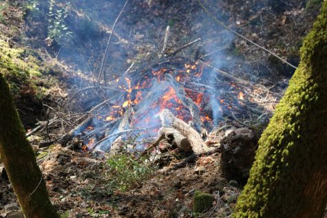Controlled fire