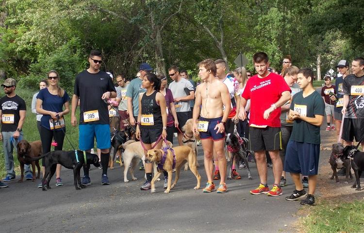 Getting ready for the 5k fun run, Saturday at Bidwell Bark, at One-Mile Park Photo credit: Josh Cozine
