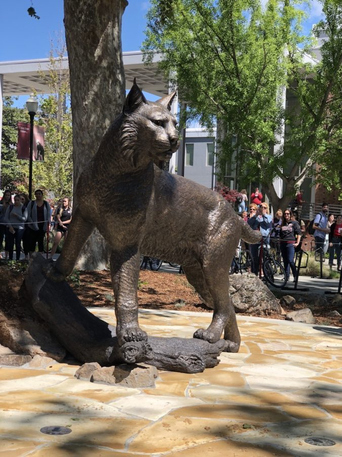 The Wildcat Statue continues to create controversy among students over the cost. Photo credit: Alejandra Fraga