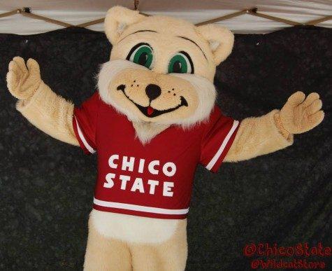 Photo credit: Chico State Wildcat Store