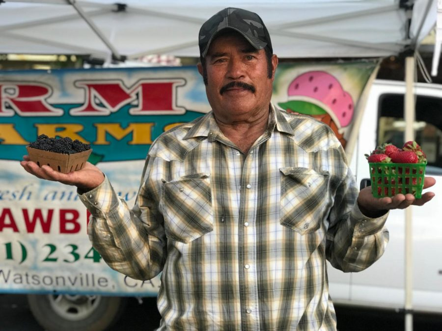 Rodolfo Martinez, owner of RM Farms, holds his blackberries and strawberries at the Chico's Thursday night market. Photo credit: Yaritza Ayon