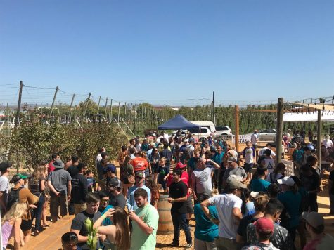 Hundreds of volunteers line up to claim their free burger courtesy of Madison Bear Garden. Photo credit: Dan Christian