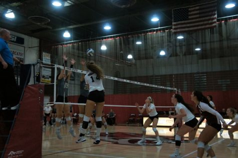 Wildcat volleyball starts hot but fizzles out