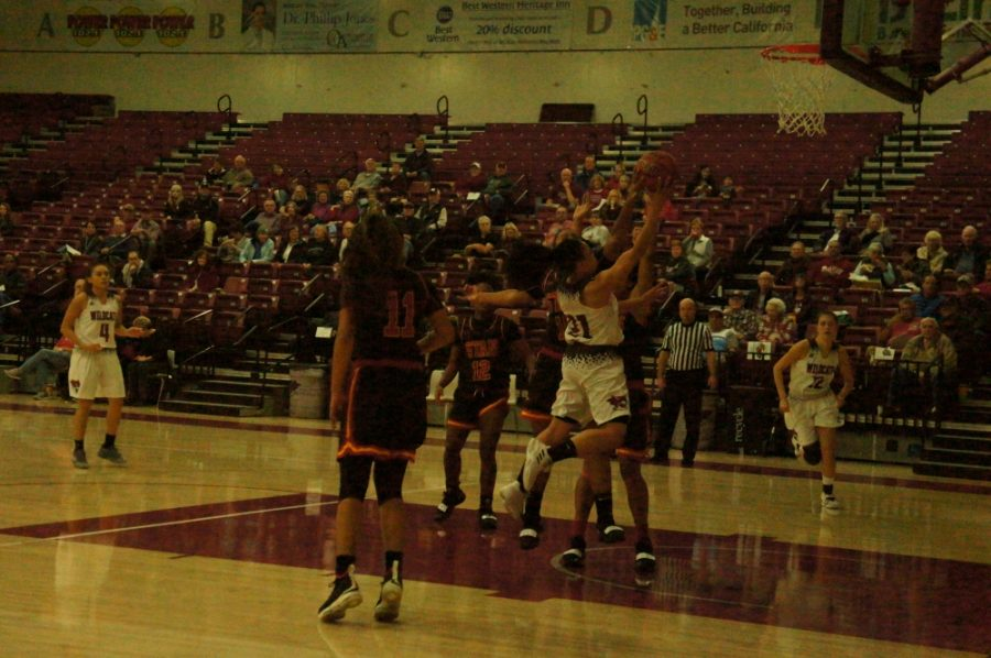 Chico State guard Shay Stark attempts a layup on Thursday night against Stanislaus State. Photo credit: Keelie Lewis