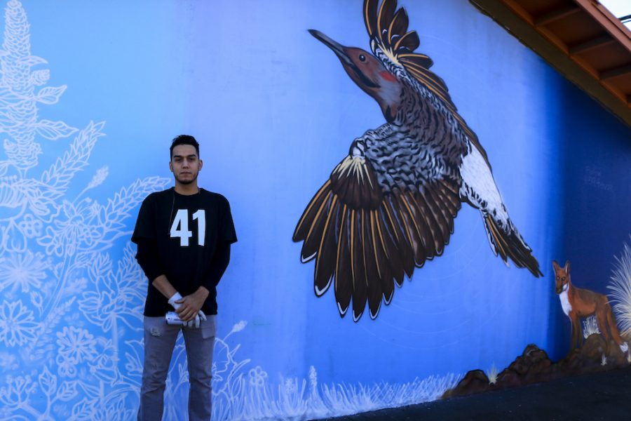 Christian Garcia In front of a flicker bird, Fox and foliage at the mural painting on Second St and Ceder St Photo credit: Melissa Herrera