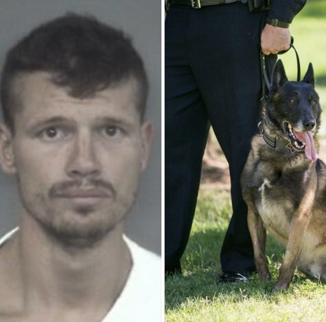 36-year-old David Bowers and K9 Aron. Photo provided by Chico Police Department. Photo credit: Angelina Mendez