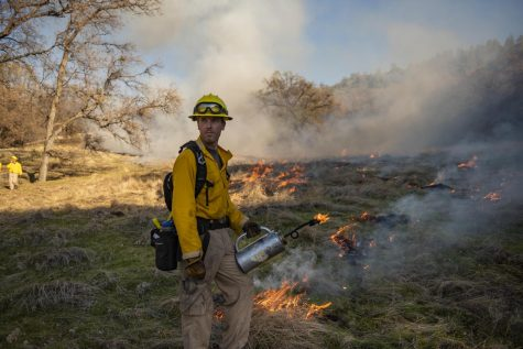 Current botany Master's student Mitch Bamford participates in a previous controlled burn. Photo credit - Jason Halley - CSU Chico University Photographer