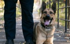 Get to know the Chico K9 Unit