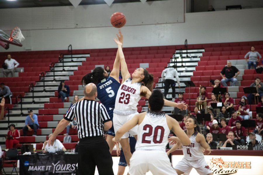 #23 Haley Ison goes for a jump ball in a basketball game at Chico State (Ryan McCasland/Chico State Sports Information)