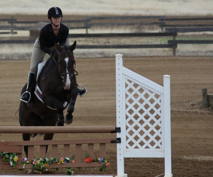 Excellent equestrians