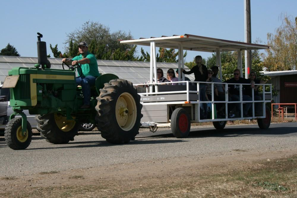 Photograph by Brooke Bell-Barnes Student volunteers  ferried tourists around the different areas of the farm on tractor-pulled passenger trailers like this one.