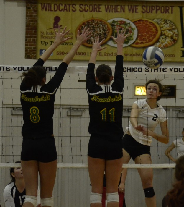 Wildcat volleyball team defeats Humboldt State
