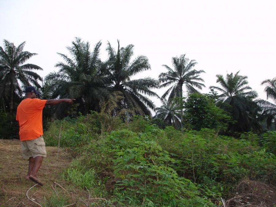 James Umekwe, partner of the Kristina Chesterman Memorial Clinic, owns land where clinic will be built. Photo courtesy of Noelle Jahn.