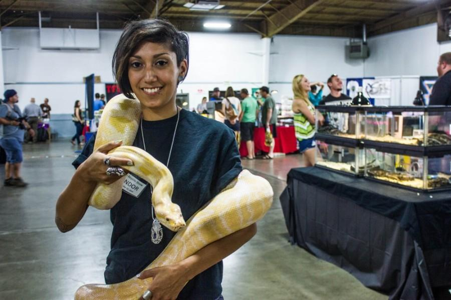 Reptiles slither into Chico