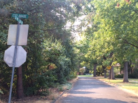 Sowillenno  Avenue to close for construction