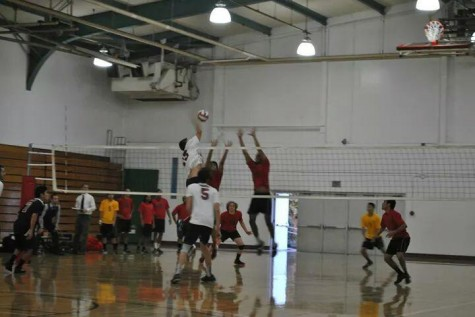Men's club volleyball to restack with rookies