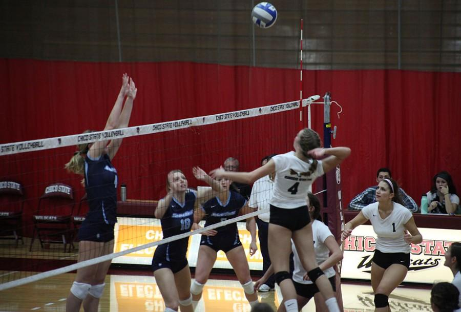 Junior Hannah Wilkins elevates for a block against Sonoma State on Friday. Photo credit: John Domogma