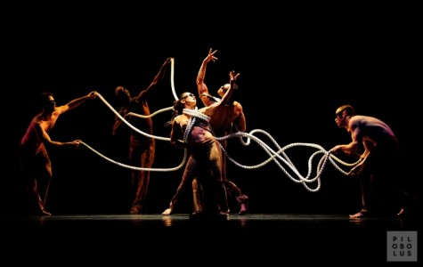 Chico Performances presents the internationally acclaimed dance company Pilobolus Nov. 11 in Laxson Auditorium. Photo courtesy of Chico Performances