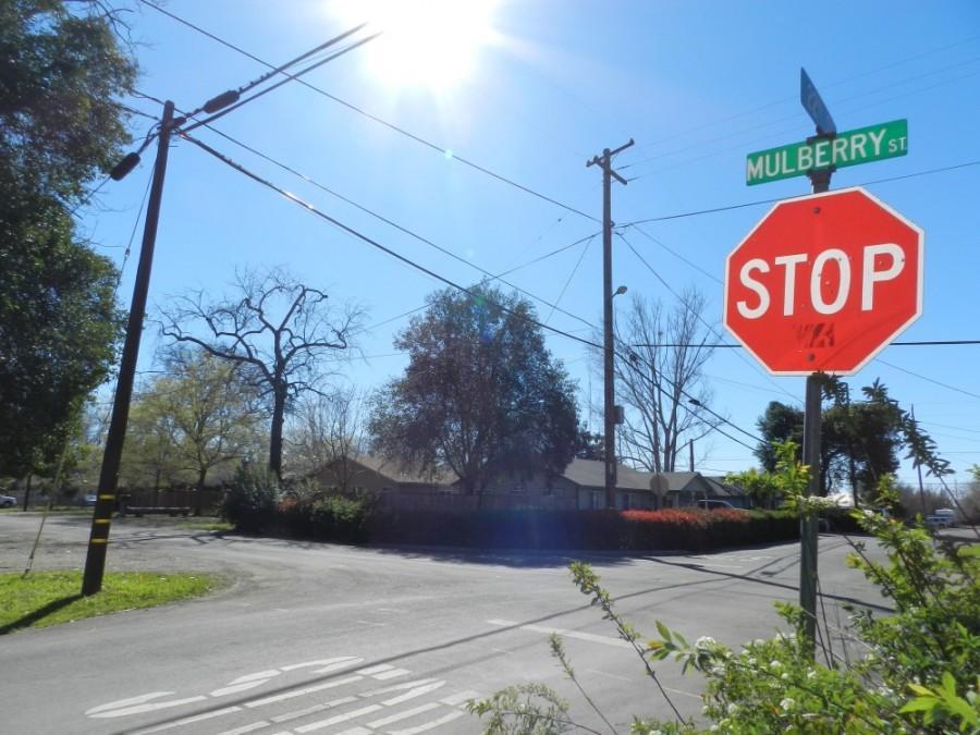 Mulberry Street where Anderson allegedly stabbed Joel Eldridge. Photo credit: Courtney Weaver