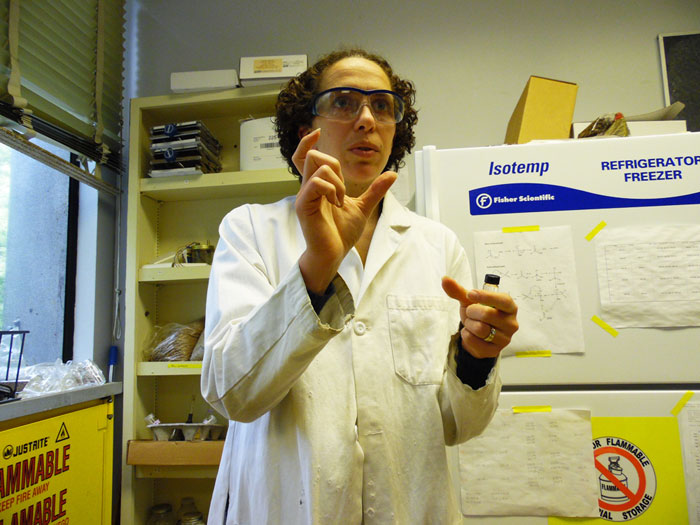 Chemistry professor Lisa Ott has been engaging in innovative research focusing on turning the glycerol waste that results from biodiesel production into a solvent that scientists can use in chemical reactions. Photo credit: George Johnston