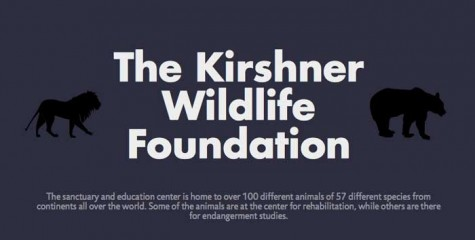 Animals of the Kirshner Wildlife Foundation