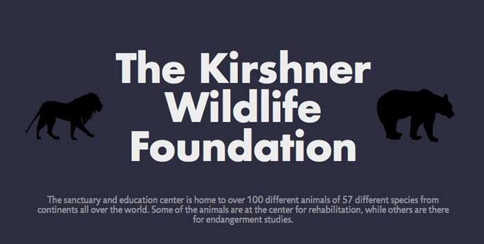 Animals of the Kirshner Wildlife Foundation