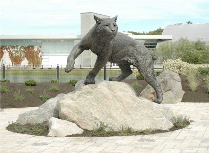 A wildcat statue from the University of New Hampshire is being used by the Associated Students as an example what Chico State's statue could look like. Students can vote for one of three potential locations for the public art piece through Wednesday. Photo courtesy of Associated Students.