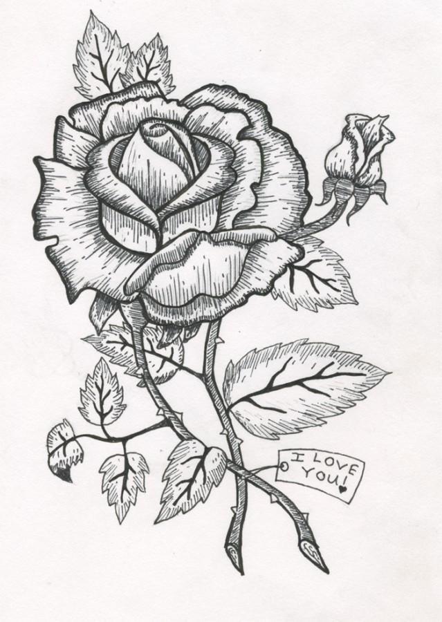 Illustration by Katherine Kurz Photo credit: Katherine Kurz