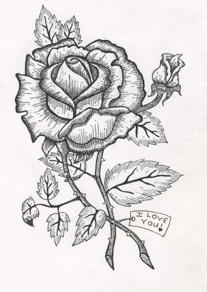 rosekatwebsite.jpg