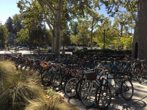 Chico city council member proposes ghost riding ban