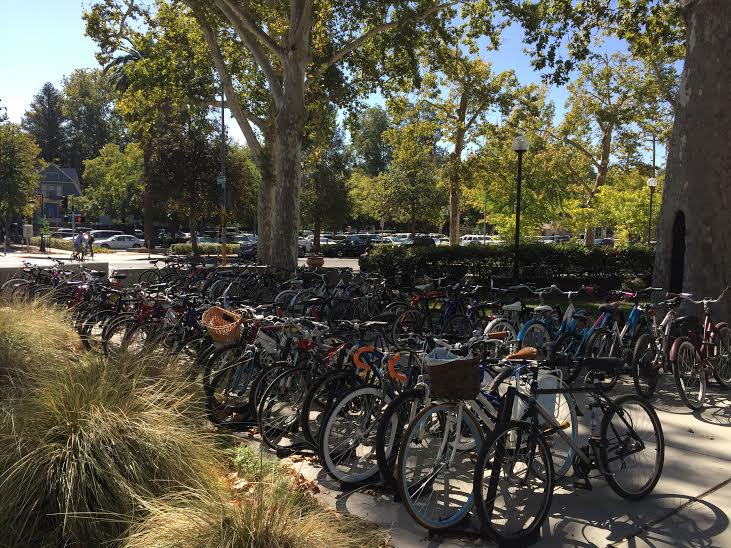 City council member Randall Stone has proposed a ghost riding ban on campus in order to prevent bicycle theft. Photo credit: Suzy Leamon