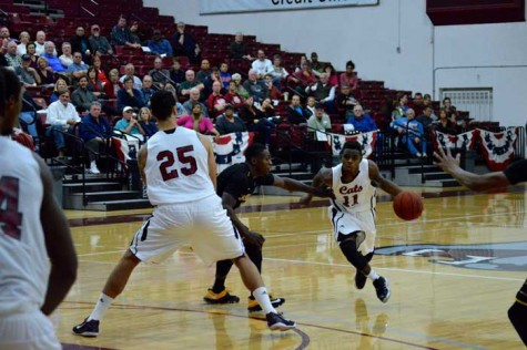 Tipping off: Chico State men's basketball  team looks to continue success